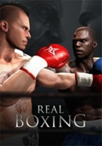 Real Boxing