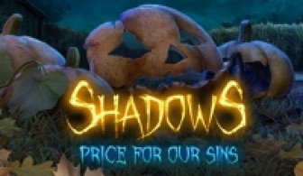 Shadow Price for our Sins