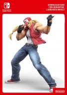 Super Smash Bros Ultimate - Terry Bogard Challenger Pack 4